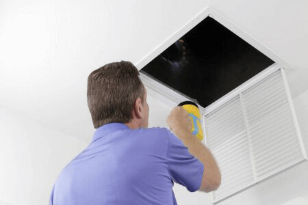 Air Purification & Filters